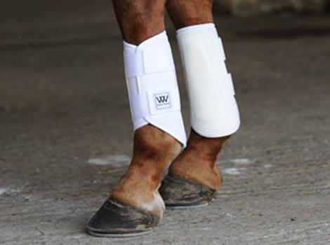 Woof Wear Horse Brushing// Splint Boots White NEW