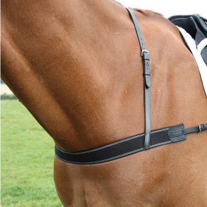 Elastic Breastgirth – Shires Blenheim