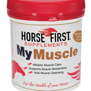 Horse First – My Muscle