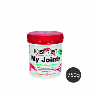 Horse First – My Joints