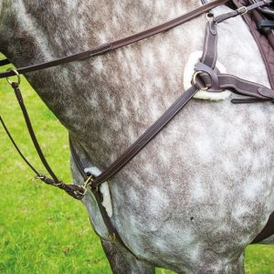 Breastplate Five Point – Shires Salisbury