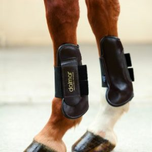 Dalmar Showjumper Leather Open Front Tendon Boot – Black