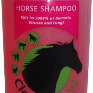 Clean Round Medicated Strawberry Shampoo