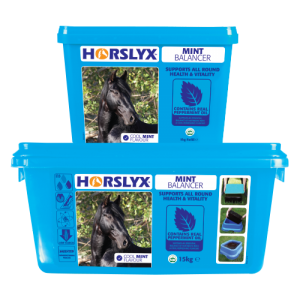 Horslyx – Mint *Delivery within Ireland Only*