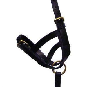 Hy Leather Foal Slip