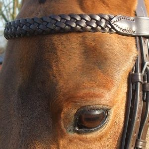 Plaited Browband 1″