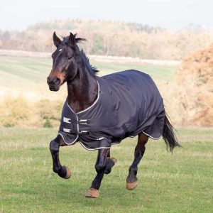 Shires Tempest Plus 300 Turnout Rug – Black