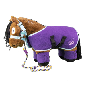 Crafty Ponies Pony Club Pony With Rug Set