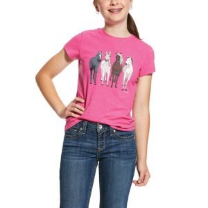 Ariat Kids 360 View T-Shirt