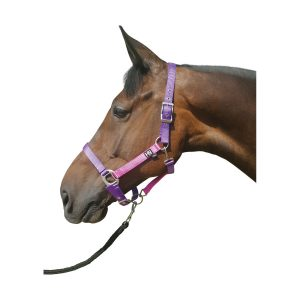Hy Metallic Look HeadCollar