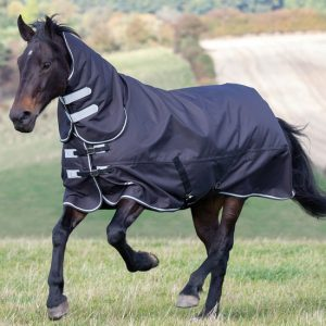 Shires Tempest Plus 300 Turnout Combo Rug