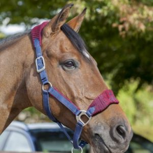LeMieux Vogue Fleece Headcollar & Leadrope – Burgundy/Navy