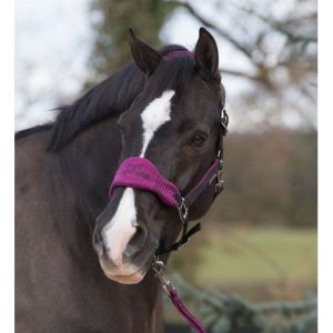 LeMieux Vogue Fleece Headcollar & Leadrope – Plum/Black