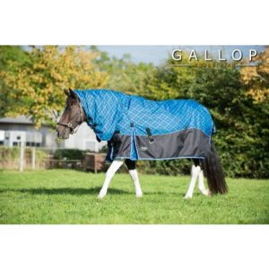 Gallop Diamond 450 Combo Turnout Rug