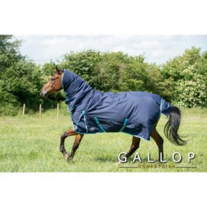 Gallop Trojan Combo 300g Turnout Rug