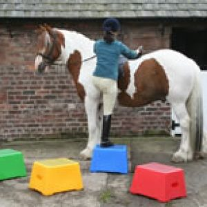 Classic Showjumps Mounting Block One Tread