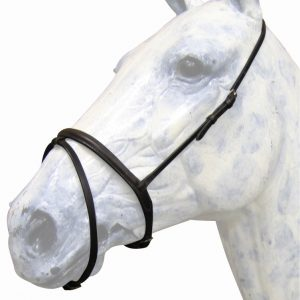 Noseband – Flash