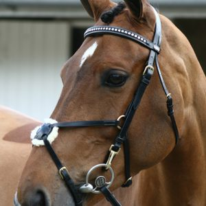 John Whitaker Deluxe Mexican Bridle