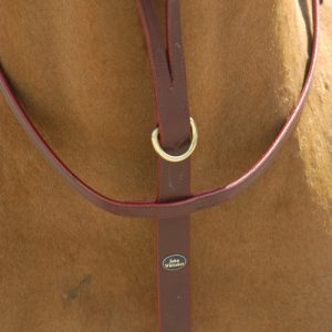 Running Martingale – John Whitaker