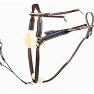 Jeffries Five Point Competition Breastplate