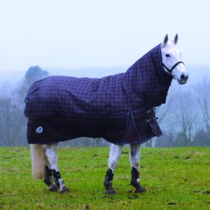 Masta Zing 450 Fixed Neck Turnout Rug