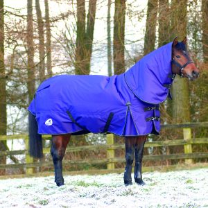 Masta Zing 350 Turnout Rug and Neck Cover