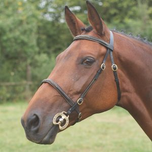 Inhand Bridle – Shires Fancy Stitched
