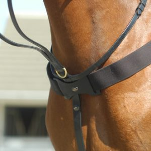 John Whitaker Elasticated Breastplate