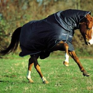 Amigo Pony 1200D Heavy Turnout Rug