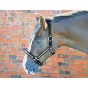 Hy Diamante Head Collar