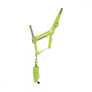HyVIZ Reflector Head Collar & Lead Rope