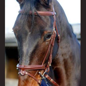 John Whitaker Super Deluxe Flash Snaffle Bridle