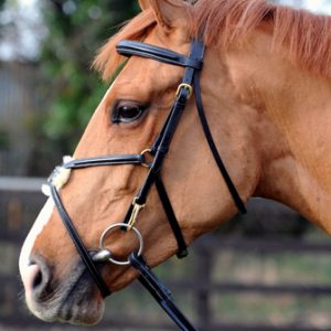 Bridle – John Whitaker Super Deluxe Mexican