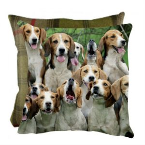 Grays Boy's Night Out Cushion