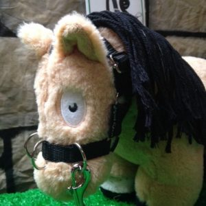 Crafty Ponies Lunge Set