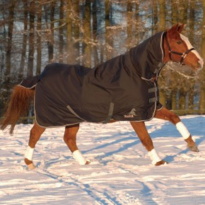 Masta Avante 340 Fixed Neck Turnout Rug