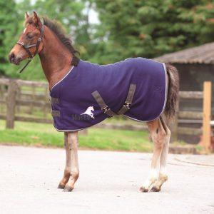 Masta Avante Foal Fleece Rug
