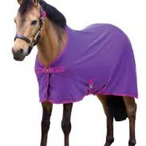 Horseware Pony Amigo Cooler- Berry/Fuschia