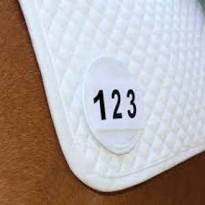 Equetech Saddlecloth Competition Numbers