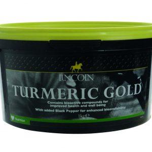Lincoln Turmeric Gold