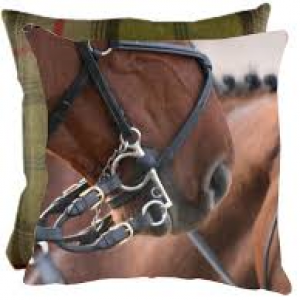 Grays Straight From The Horses Mouth Cushion